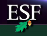 SUNY-ESF Launches New Radiation Curing Program