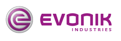 Evonik Completes Successful 2013
